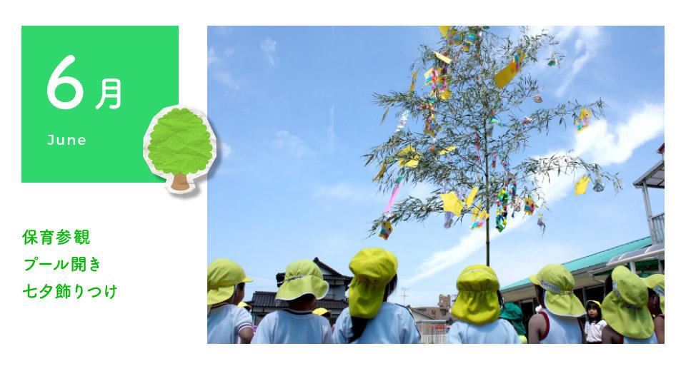 6月 保育参観・プール開き・七夕飾りつけ